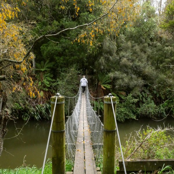 Swing bridge paengaroa